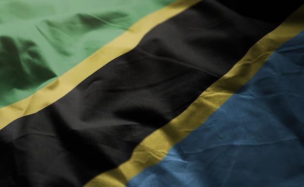 タンザニアの国旗しわくちゃのクローズアップ