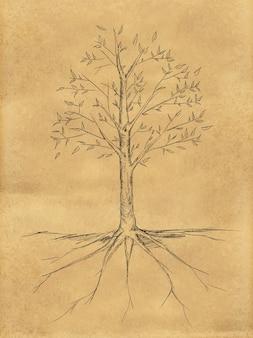 紙の上に葉を持つ木のスケッチ