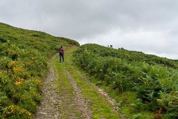 曇りの日の小道の小道は、小道に小旅行者がいます。