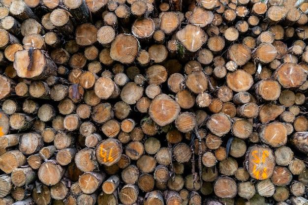 Уложены деревянные бревна, уиклоу путь.