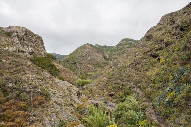 テネリフェ島チャモルガの渓谷。