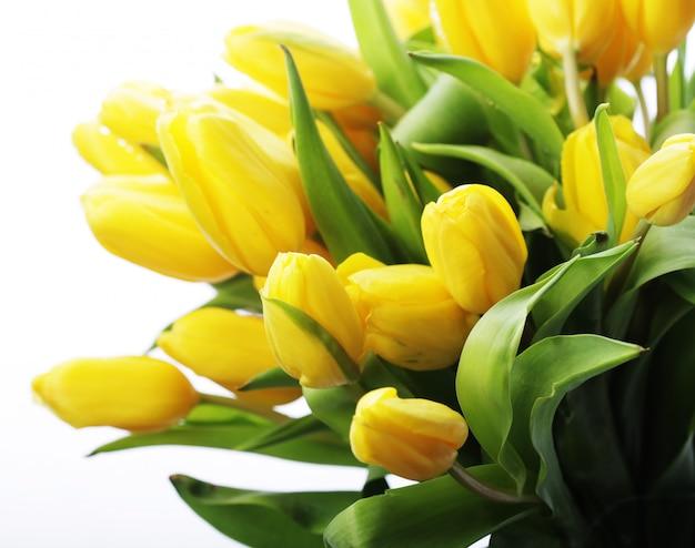 黄色のチューリップの美しい花束