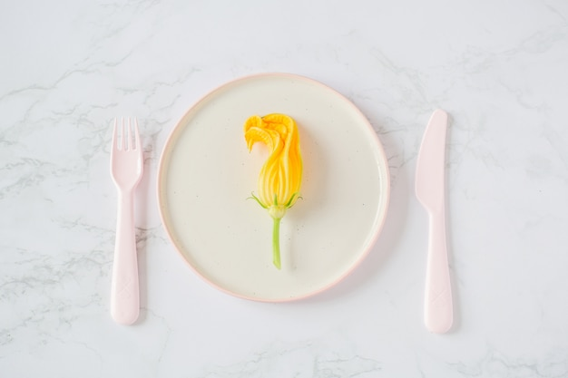 明るい背景にプレートのズッキーニの花