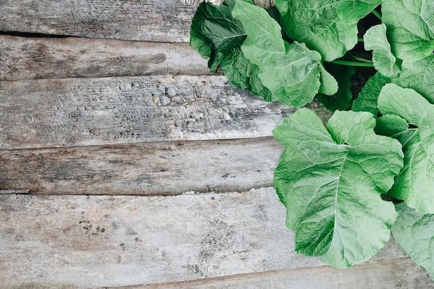 木製の背景に大きなゴボウの葉。薬草。