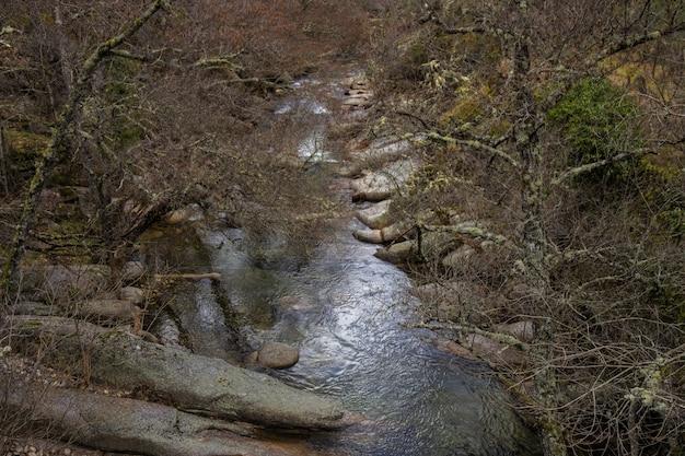 Река франсия. пейзаж в батуекасе природный парк. испания.
