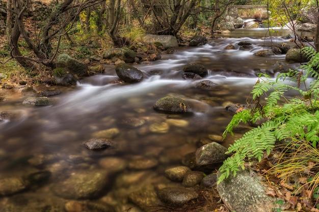 Гарганта сан грегорио, пейзаж близ альдеануева-де-ла-вера, касерес.