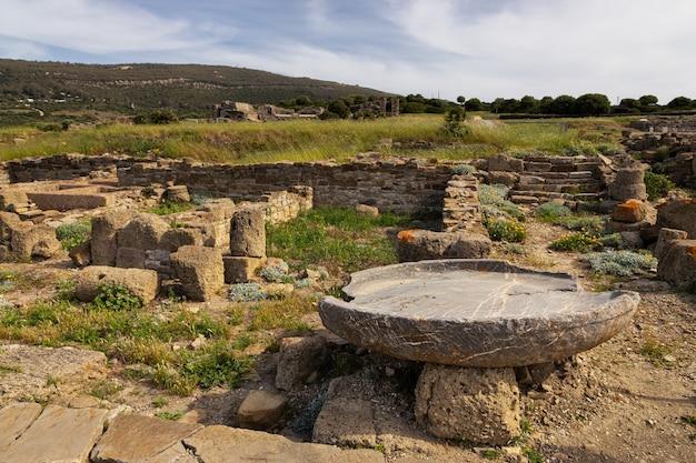 タリファの近くにあるバエロクラウディアのローマ時代の遺跡。アンダルシア。スペイン。