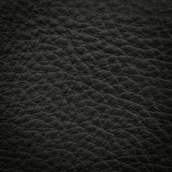 ブラックレザーマクロショット