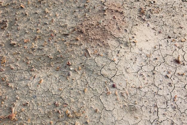 ひびの入った土