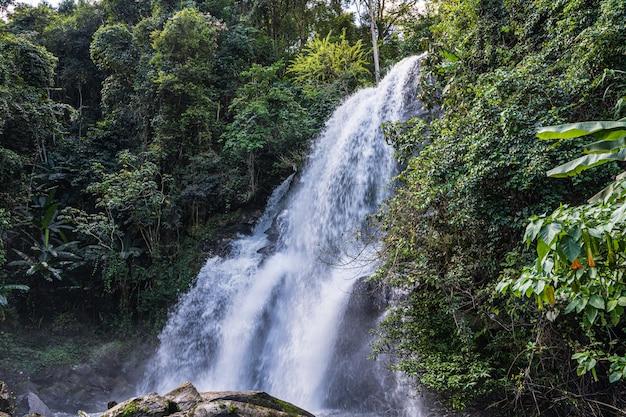 ジャングルの真ん中に落ちる滝