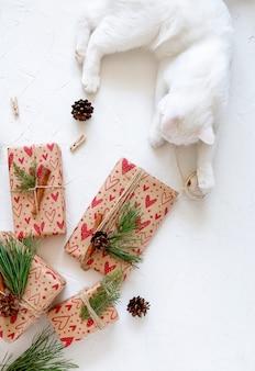 白い背景の上のクリスマスプレゼントと白い子猫