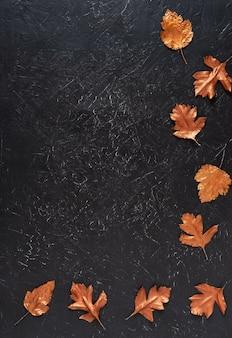 Листья окрашены золотой краской на черном
