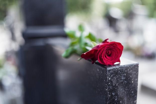 墓石に薔薇。