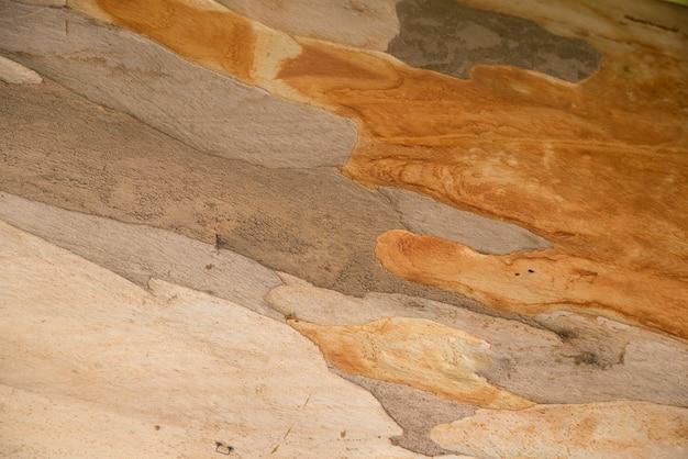 プラタン樹皮の質感