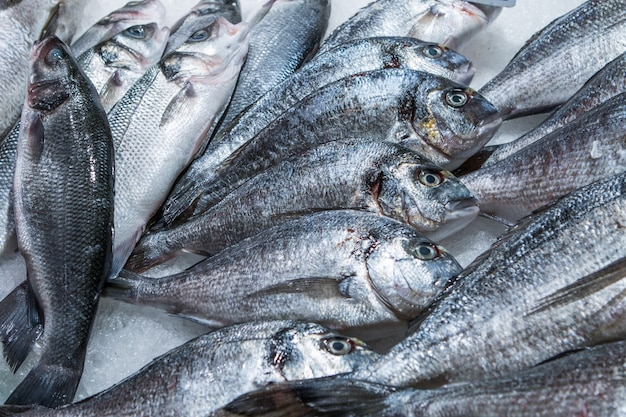 Рыба морского леща на льду на рынке