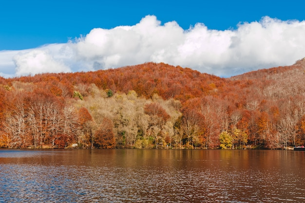 Красивый пейзаж осенью