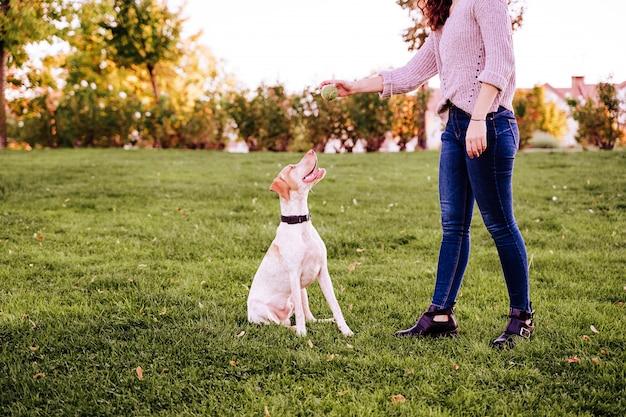 公園で彼女の犬と遊ぶ若い女性