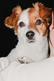 若い女性と彼女のかわいい犬。黒の背景。スタジオ撮影。動物のコンセプトが大好き