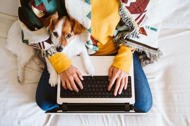 自宅のラップトップに取り組んで、犬と一緒にソファに座っている若い女性