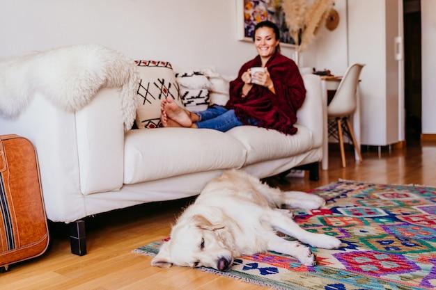 ソファに座って、お茶を楽しんで美しい女性。かわいいゴールデンレトリバーの犬。屋内でのライフスタイル。上面図