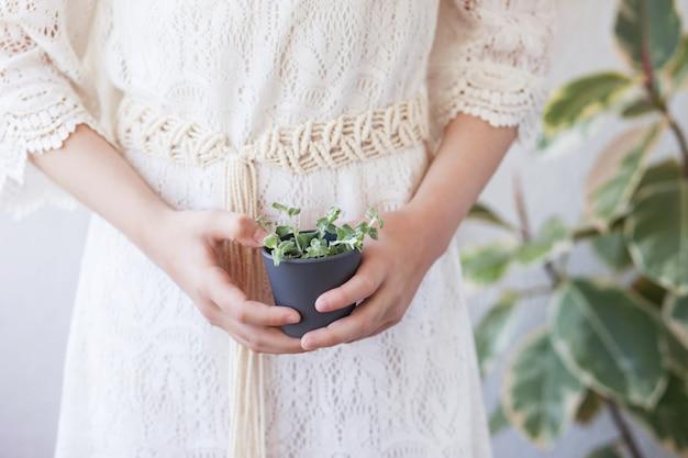若い緑の植物と植木鉢を保持しているかわいい女の子。