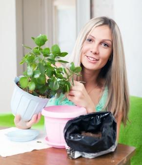 Женщина трансплантации каланхоэ цветок