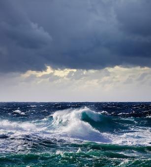 高い海の波