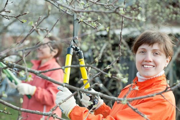 Женщины обрезали ветки в саду