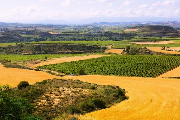 Сельский пейзаж летом. ла-риоха