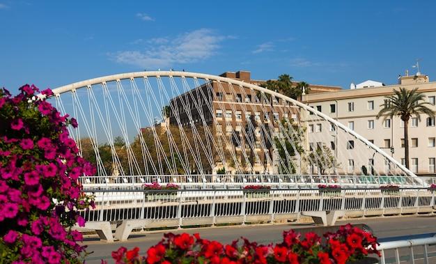 ムルシアの眺め。セグーラの橋