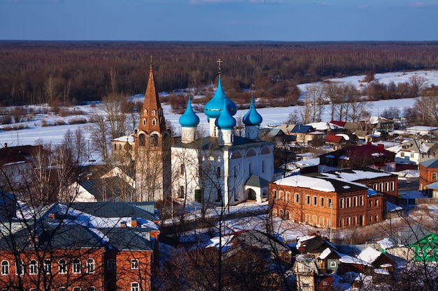 Гороховец зимой. россия