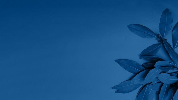 Классический синий фон из экзотических листьев окрашен в классический синий цвет
