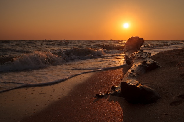 休日休暇旅行の概念:海。ビーチ。夜明け。日没