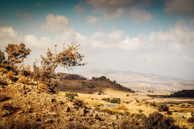 Слабый и сухой скалистый средиземноморский пейзаж