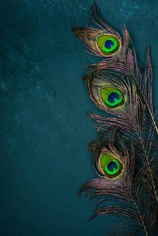 Яркие разноцветные перья павлина на темном