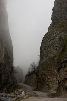 曇り空を背景の茂みとともに山