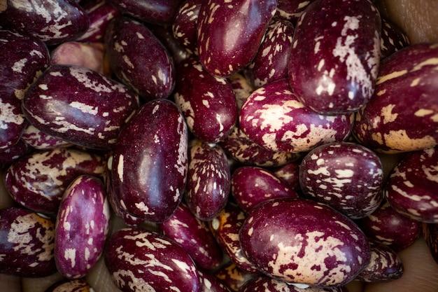 赤い斑点インゲン豆の背景クローズアップビュー
