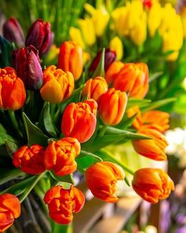 赤いチューリップの花の花束の側面図