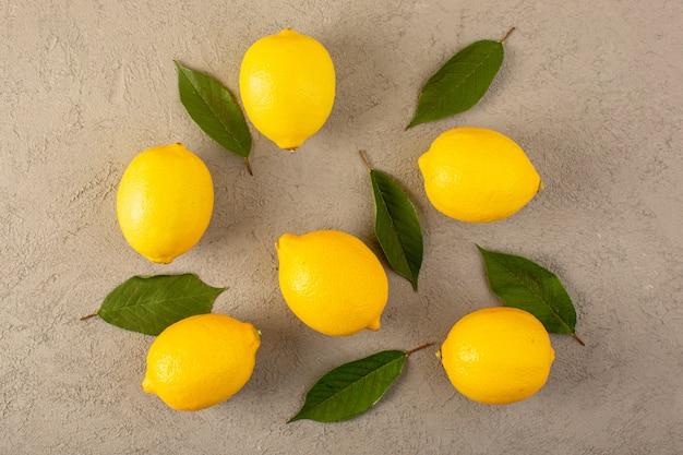 トップビュー黄色の新鮮なレモン熟したジューシーな熟したジューシーな緑の葉が灰色の背景果物柑橘系の色に並んで
