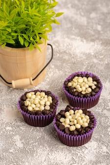 Вид спереди вкусные шоколадные пирожные с шоколадными гранулами вместе с зеленым растением на ярком столе