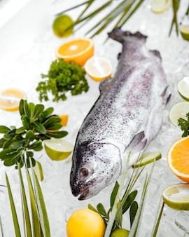 果物に囲まれた氷の上に置かれた生の魚のクローズアップ