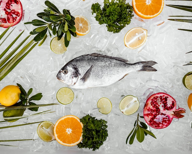 Вид сверху сырой рыбы, помещенной на лед в окружении кусочков фруктов