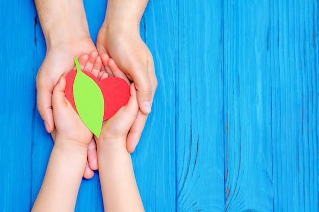 Зеленое сердце в руках взрослого и ребенка