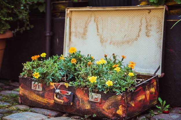 花と古いスーツケース