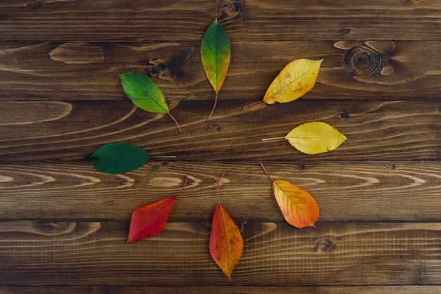 Натуральные часы из осенних листьев. концепция часов. осенние листья переходят с зеленого на красный на деревянном фоне