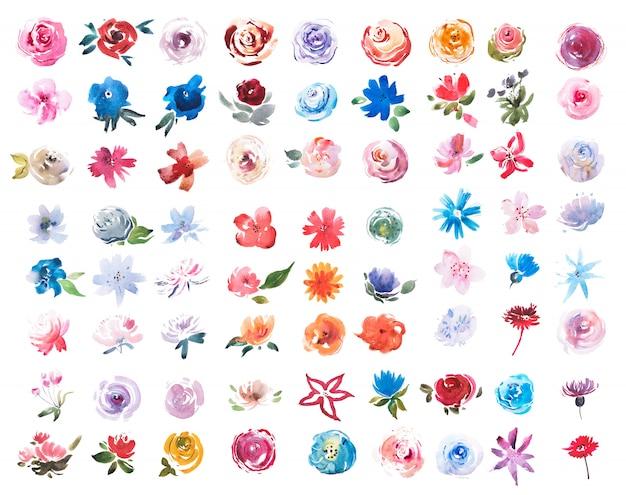 夏の草原の新鮮な花の水彩セット