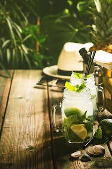 Концепция летних каникул - против деревенской тропической сцены