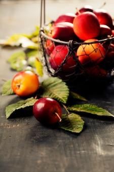 Красные яблоки, осенняя сцена