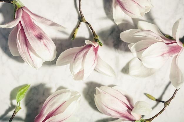白い大理石のテーブルに美しいピンクのマグノリアの花。上面図。フラット横たわっていた。春の最小限のコンセプト。