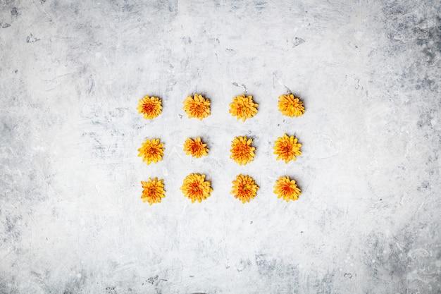 灰色の石の背景にオレンジ色の菊